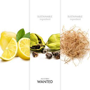 Wanted EDT Comunes