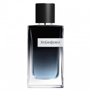 Y Men Eau de Parfum 100 ml